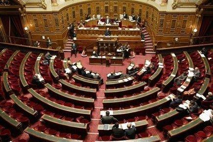 05/11/2014 Néonicotinoïdes : le Sénat examinera une proposition de moratoire le 19 novembre | Abeilles, intoxications et informations | Scoop.it