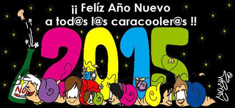 ¡¡FELÍZ 2015!!   Novedades Caracool   Scoop.it