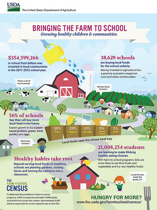 Nationwide Census on Farm to School Activities Shows Promising Results | School Gardening Resources | Scoop.it