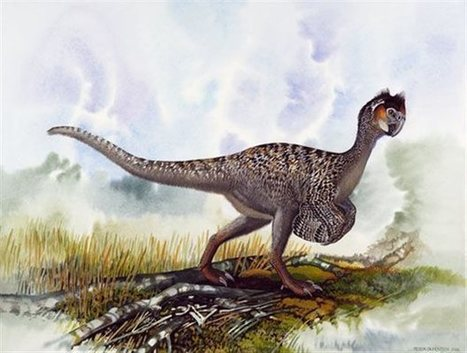 tovima.gr - Χρωματιστά αβγά έκαναν οι δεινόσαυροι! | Η Βιολογία στην Εκπαίδευση | Scoop.it