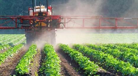 Des pesticides dangereux autorisés par les sénateurs contre l'avis général - Le Nouveau Paradigme   Home   Scoop.it