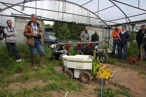 Des robots bineurs pour les maraîchers - Ouest France entreprises | Agriculture en Dordogne | Scoop.it
