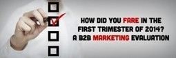 How Did You Fare in the First Trimester of 2014? A B2B Marketing Evaluation | B2B Blog Tips, B2B Telemarketing, B2B Lead Generation Campaigns | Scoop.it