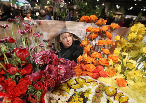 Flower Show opens with hopes of broadening appeal | Annie Haven | Haven Brand | Scoop.it