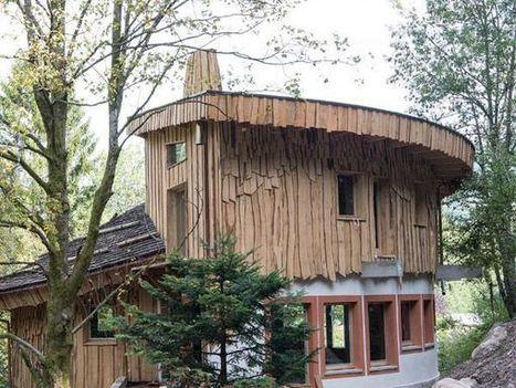 Un village de cabanes en bois dans la forêt vosgienne | ENR | Scoop.it