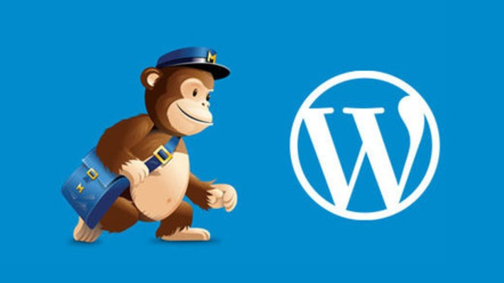 Ultimate Guide to Using MailChimp and WordPress | Google Plus Business Pages | Scoop.it