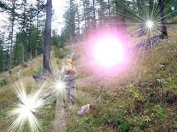 Un bagno energetico nel bosco | www.ecplanet.com | FormAzione e Lavoro per Passione | Scoop.it