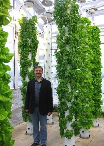 MELD   Guerilla Greening   Vertical Farm - Food Factory   Scoop.it