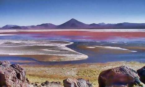 Spectrum of life: Nonphotosynthetic pigments could be biosignatures of life on other worlds   Amazing Science   Scoop.it