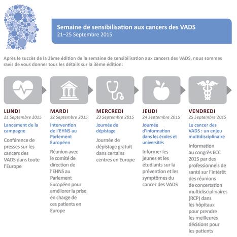 Cancer des VADS   Cancérologie et soins de support   Scoop.it