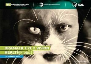 La FDA hace equipo en novedosa campaña sobre los riesgos de los lentes de contacto cosméticos | Salud Visual 2.0 | Scoop.it