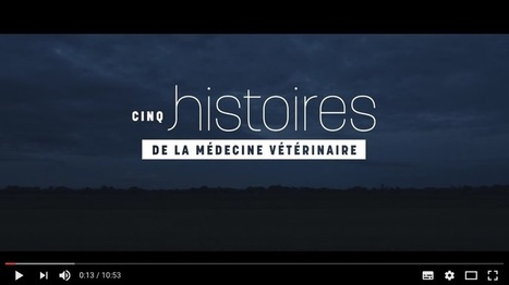 5 histoires de la médecine vétérinaire | Actualités de l'élevage | Scoop.it
