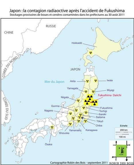 Les déchets du tremblement de terre et du tsunami au Japon | Japan Tsunami | Scoop.it