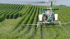 Fin des épandages phytosanitaires par hélicoptère en Champagne - France 3 Champagne-Ardenne | Champagne Actu | Scoop.it
