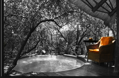 Family Run Lodge Which Is Bordering The Kruger | travel | Scoop.it