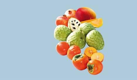 Las cuatro frutas que hay que comer este otoño | I didn't know it was impossible.. and I did it :-) - No sabia que era imposible.. y lo hice :-) | Scoop.it