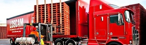 Where to Buy Durable Pallets in Melbourne?   Loscam   Scoop.it