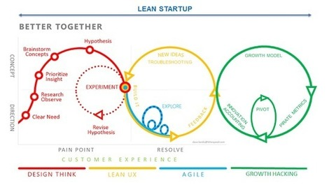 Biology of Distributed Information Systems: Lean Startup and Lean Software Factory I Yves Caseau | Entretiens Professionnels | Scoop.it