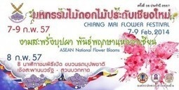 Sightseeing Chiang Mai For a Flower Festival 2014   Travel Around The World   Scoop.it