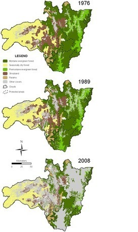 Deforestation and Forest Fragmentation in South Ecuador since the 1970s – Losing a Hotspot of Biodiversity | GarryRogers NatCon News | Scoop.it