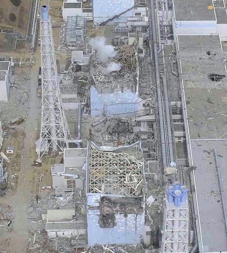 Tout va très bien Madame la Marquise de Fukushima | menfin utopiste | Scoop.it