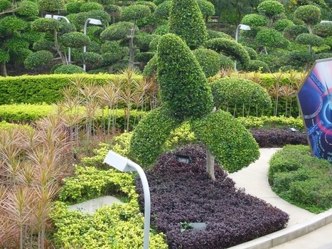 Easy Landscaping Ideas for Your Backyard | Lifestyle Super Tips | Scoop.it