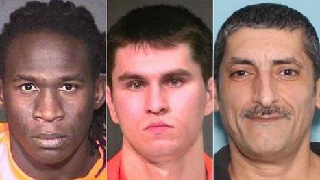 Arizona sheriff blasts Feds for releasing violent immigrants into communities | Criminal Justice in America | Scoop.it