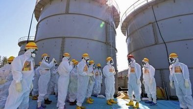 What have we learned from Fukushima? | Environment | Scoop.it