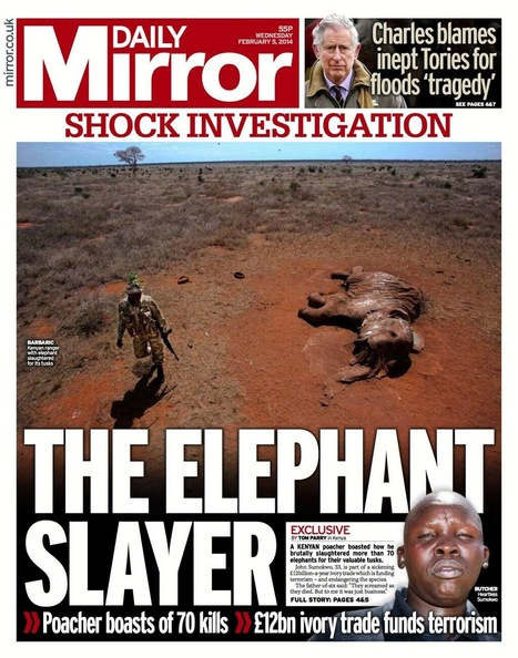 Slaughtering Elephants and the Benefits of Hunting as Wildlife Conservation | Conservation in America - Adapt or Die | Scoop.it