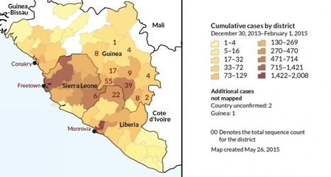 Ebola continues to shift, but grows no more fatal | Virology and Bioinformatics from Virology.ca | Scoop.it