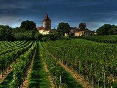 Vin: Bordeaux hausse le ton contre les pesticides | Oenotourisme en Entre-deux-Mers | Scoop.it