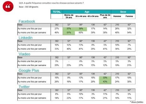 France : les dirigeants de PME/ETI désertent les réseaux sociaux, même LinkedIn | La veille en ligne d'Open-DSI | Scoop.it