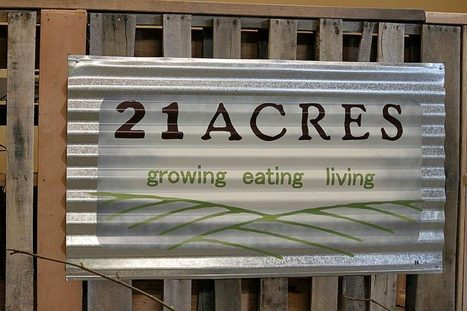 21 Acres: A Farmers' Market Becomes a Sustainable Living Center | Environmental Innovation | Scoop.it