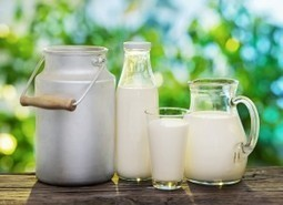 A cup of milk every day keeps the cardiologist away | Health News | Scoop.it