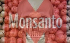 FANTASTIC - Victory: Senate to Kill Monsanto Protection Act Amid Outrage | News You Can Use - NO PINKSLIME | Scoop.it