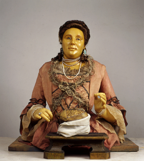 'The Lady Anatomist': 18th-Century Wax Sculptures by Anna Manzolini | Merveilles - Marvels | Scoop.it