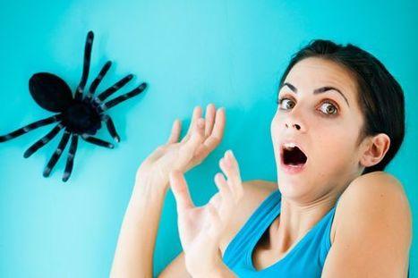 Quand les mots effacent les peurs | Le sens de votre vie | Scoop.it