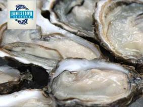 Jamestown Seafood introduces Oysters from Sequim Bay | Aquaculture Directory | Aquaculture Directory | Scoop.it