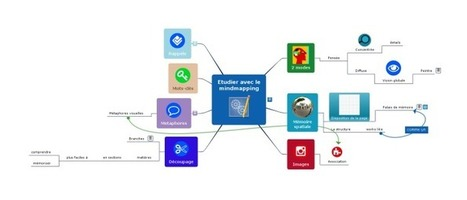 1ère: La carte heuristique comme support graphi... | Cartes mentales | Scoop.it