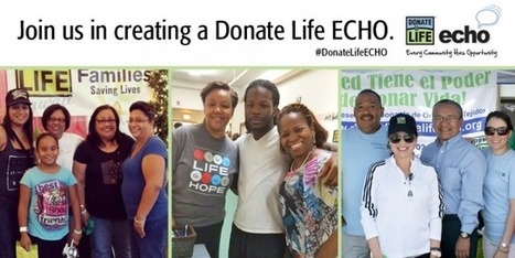 ECHO Social Media Campaign to Increase Awareness of Organ Donation | AMAT - Minorities and Organ Donation, Organ Transplants - Association of Multicultural Affairs in Transplantation | Organ Donation & Transplant Matters | Scoop.it