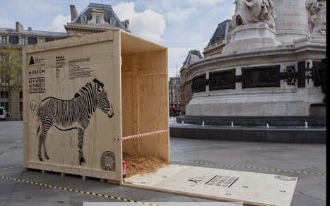 Le zoo de Paris crée un street marketing avec des caisses d'animaux géantes | streetmarketing | Scoop.it