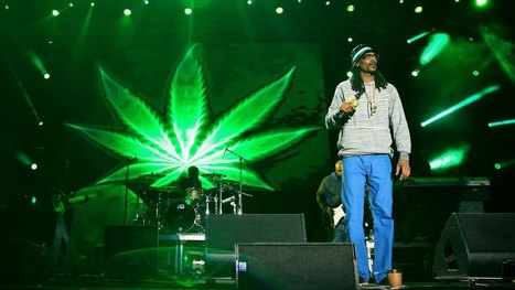 Snoop Dogg For CEO Of Twitter | Information Technologies | Scoop.it