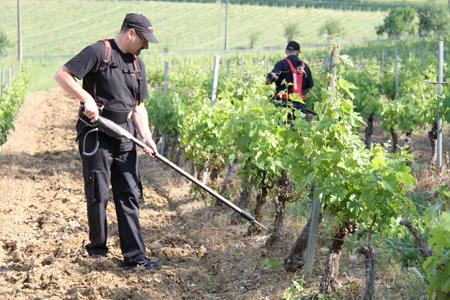 Innovation : Vinitech dévoile son palmarès | Viticulture | Scoop.it