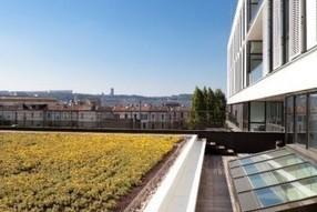 Ecohabitat : toujours plus de toitures végétalisées | Toit végétalisés et agriculture | Scoop.it