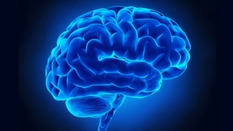 How trauma changes the way our brain forms memories   Attachment & Trauma   Scoop.it