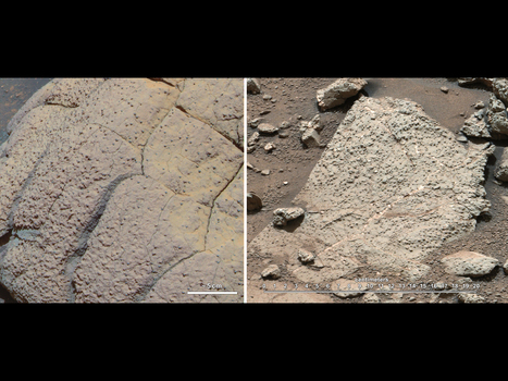 NASA Rover Finds Conditions Once Suited for Ancient Life on Mars | Amazing Science | Scoop.it