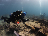 National Association of Black Scuba Divers to help Florida Keys National Marine Sanctuary unravel shipwreck mystery | Archaeology News | Scoop.it