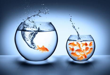 La única posibilidad de descubrir los límites de lo posible es aventurarse un poco más allá de ellos, hacia lo imposible (Arthur C. Clarke) | I didn't know it was impossible.. and I did it :-) - No sabia que era imposible.. y lo hice :-) | Scoop.it