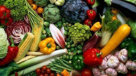 Nuevo Reglamento de la Ley federal de sanidad vegetal | Ediciones JL | Scoop.it