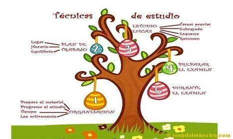 Técnicas: estudio primaria - Web del maestro - Educación Infantil y Primaria | Psicopedagogía | Scoop.it